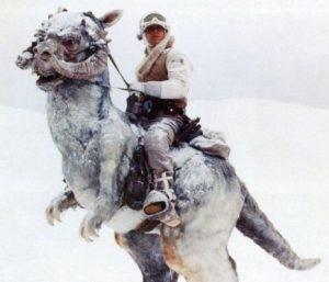 I lave you with a Hoth Reference :)